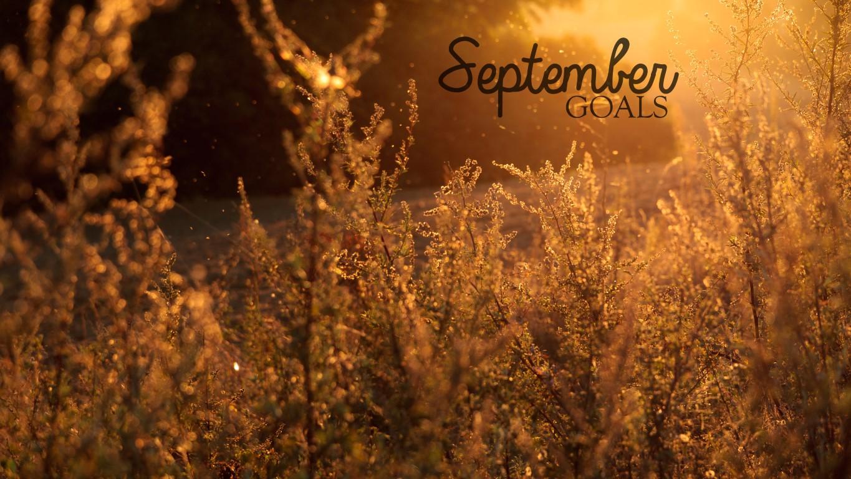 september2014goals