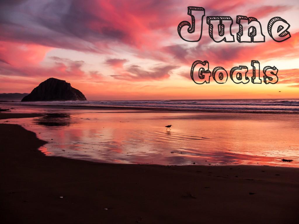june2016goals
