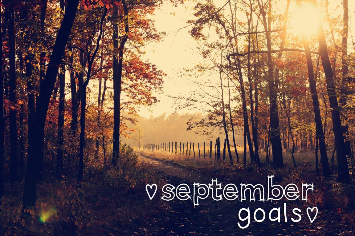 september2016goals